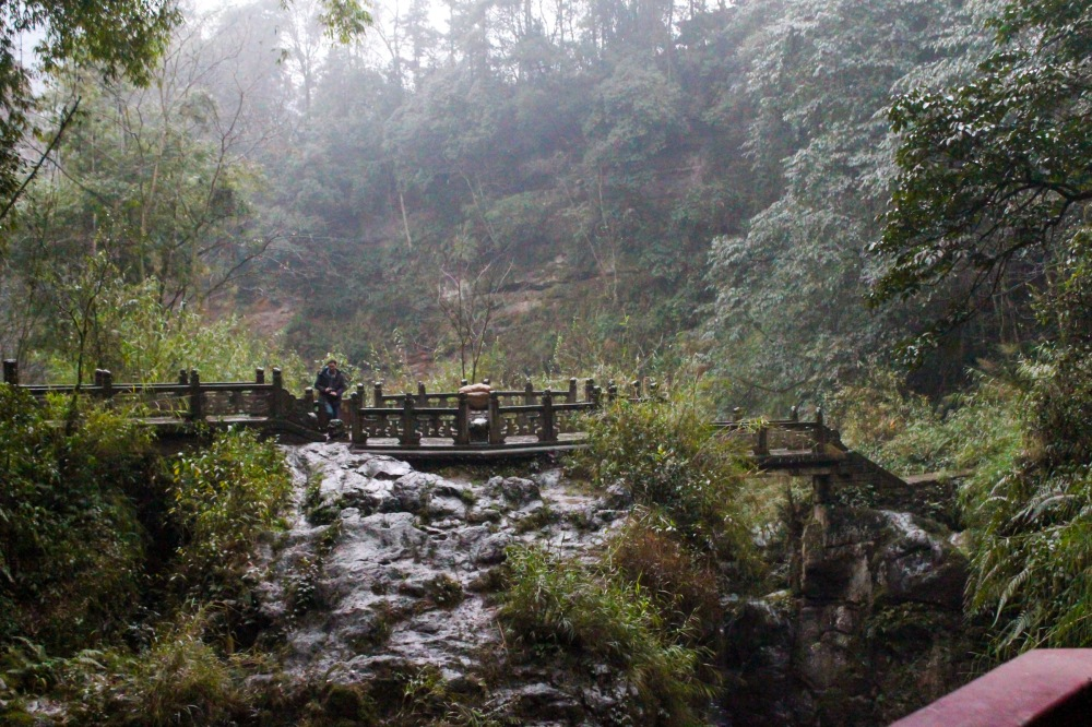 chengdu-jiuzhaigou-305